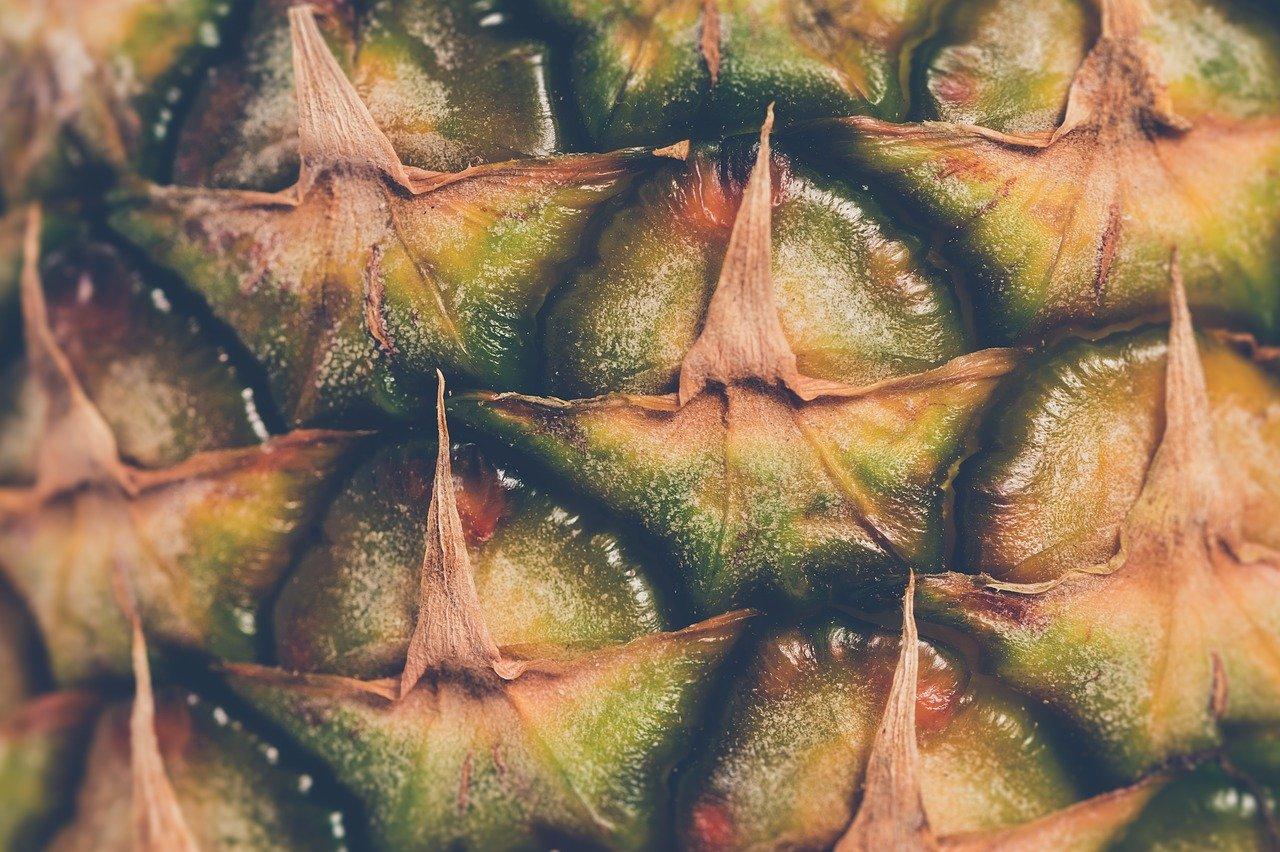 Ananas, ungezuckert (Konserve) Essen und Trinken Früchte