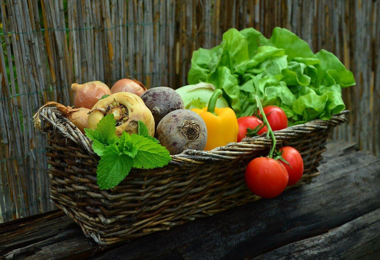 Gemüsegratin, gebacken Essen und Trinken Gerichte