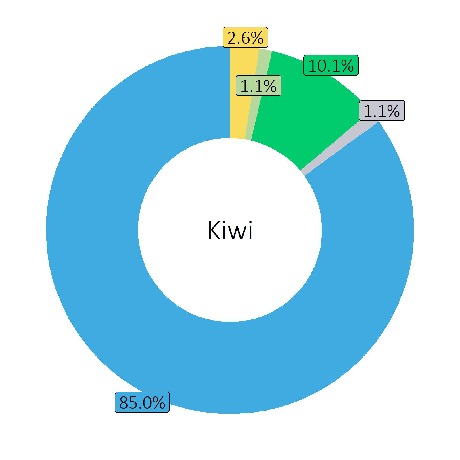 Bestandteile Kiwi