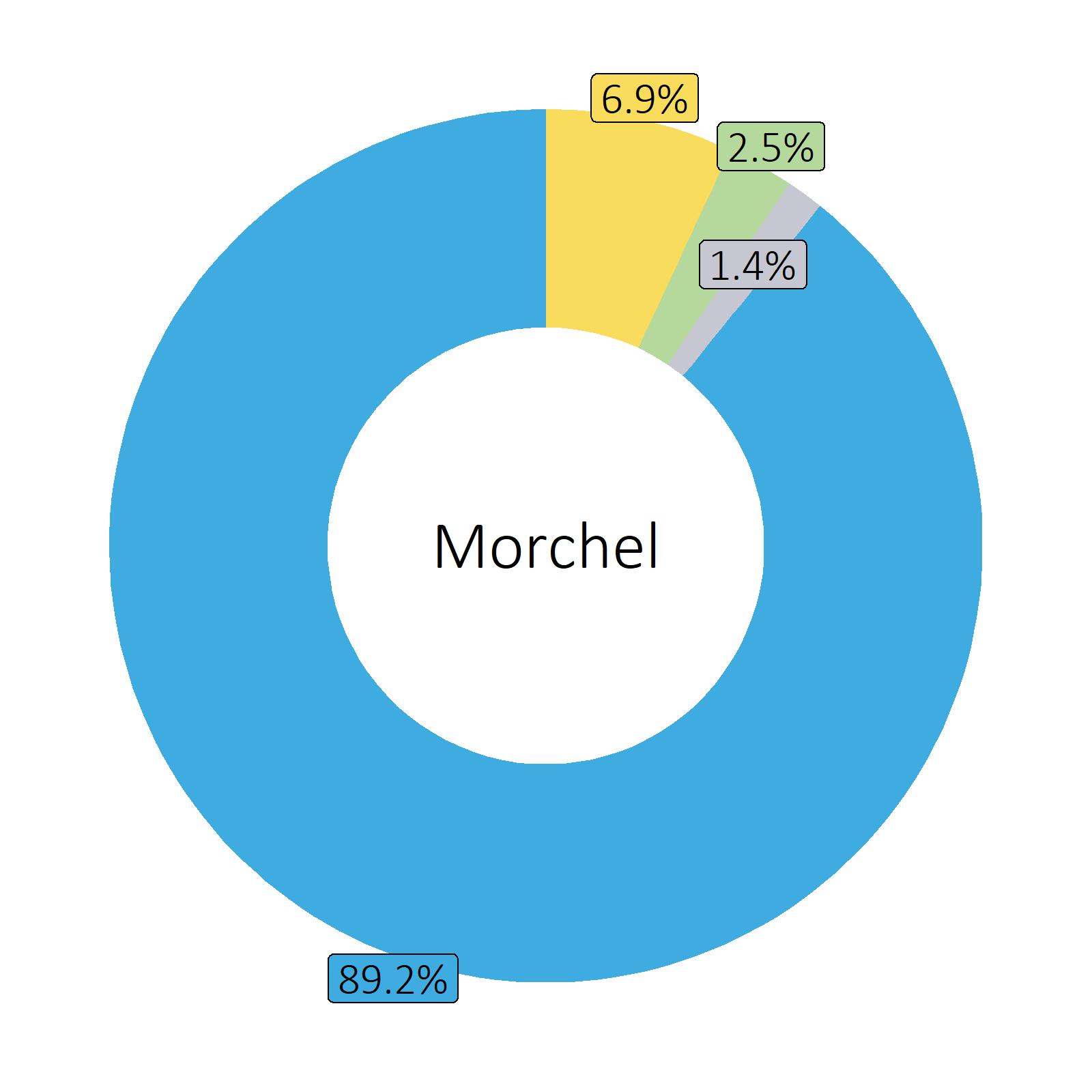 Bestandteile Morchel