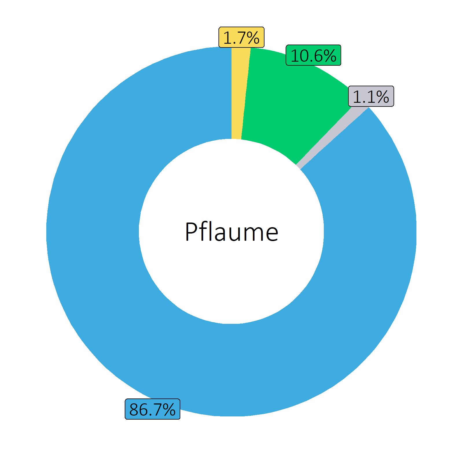 Bestandteile Pflaume
