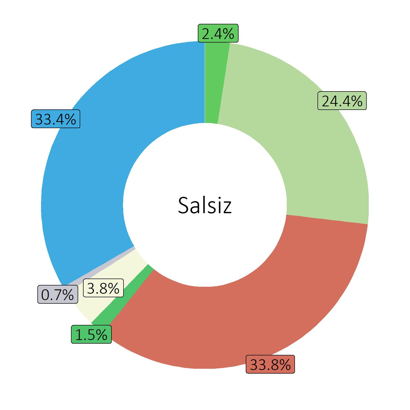 Bestandteile Salsiz