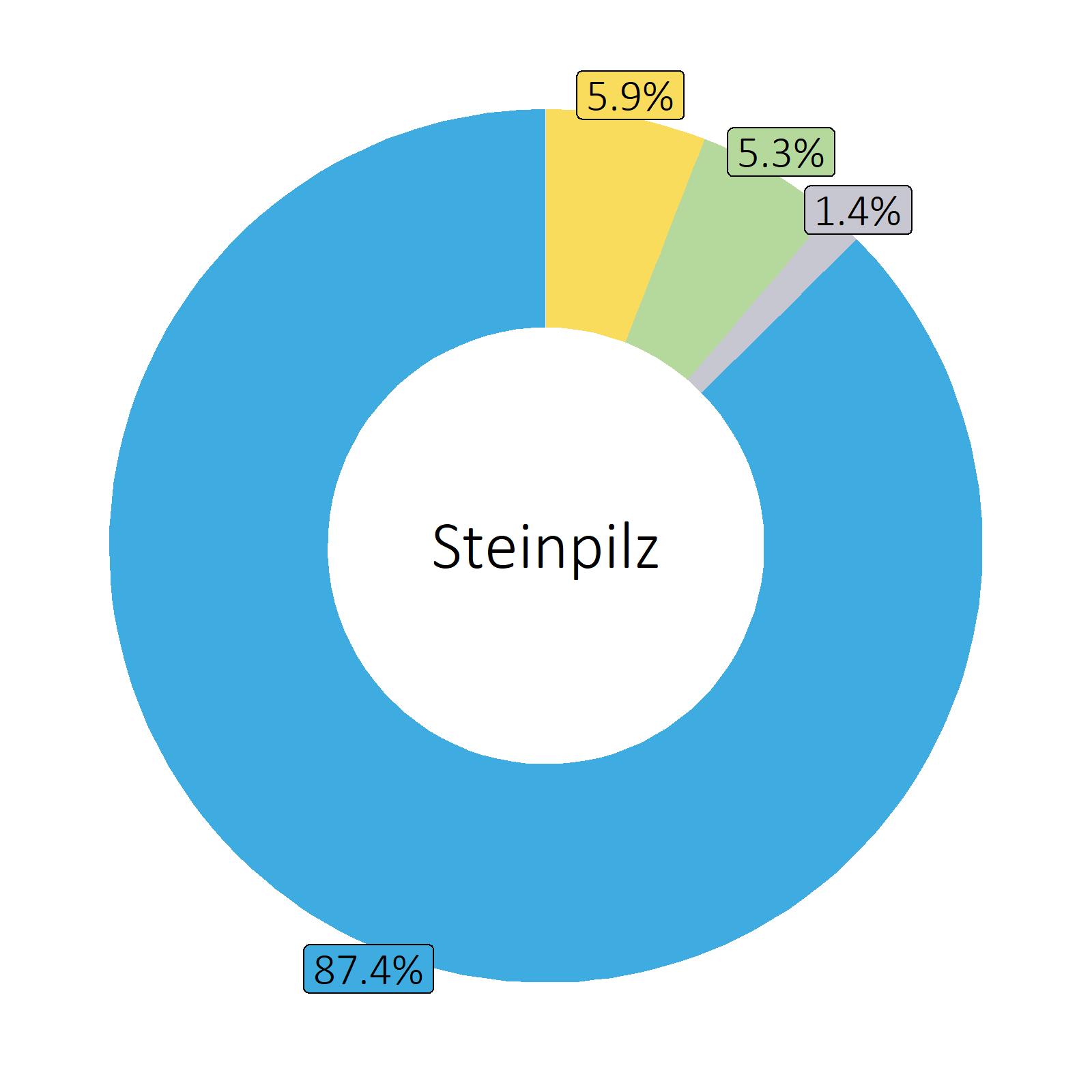 Bestandteile Steinpilz
