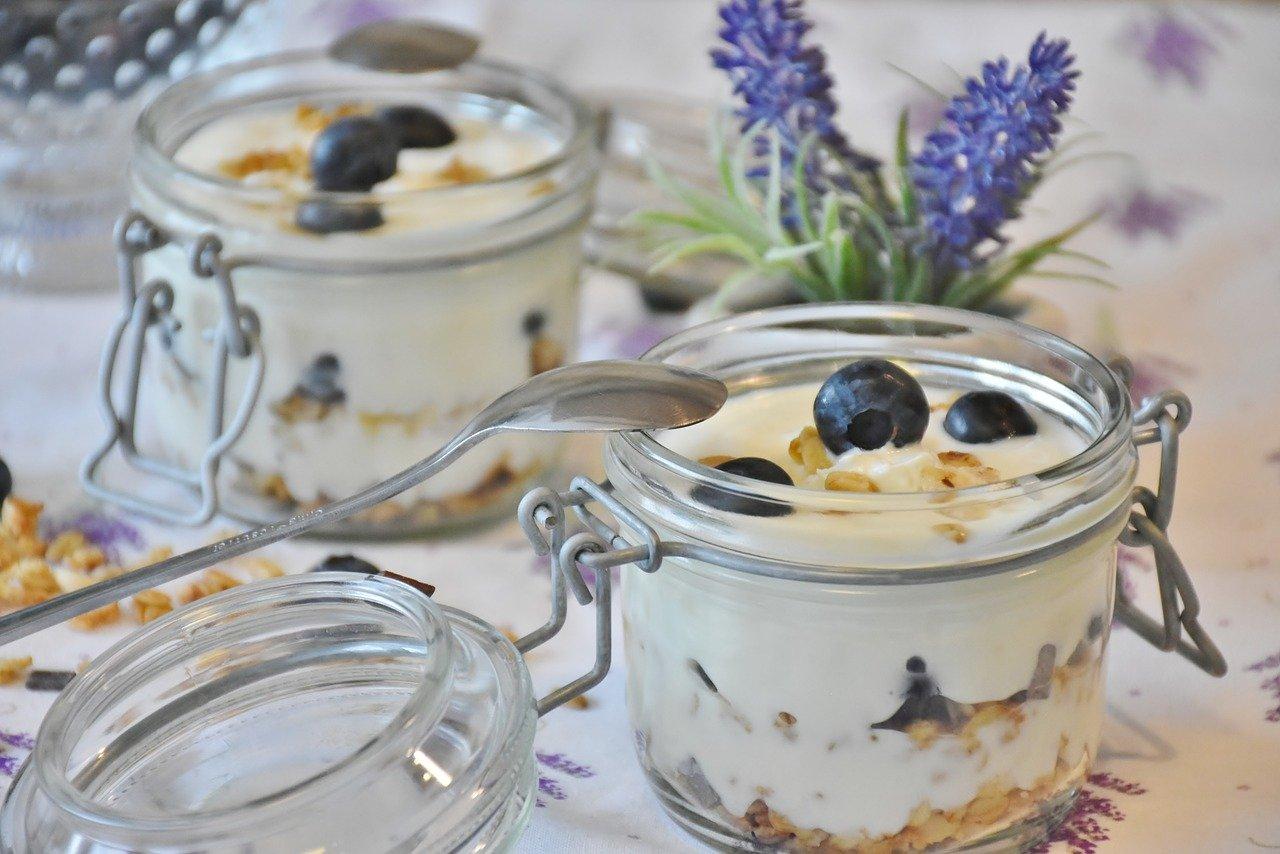 Joghurt, Haselnuss Essen und Trinken Milchprodukte