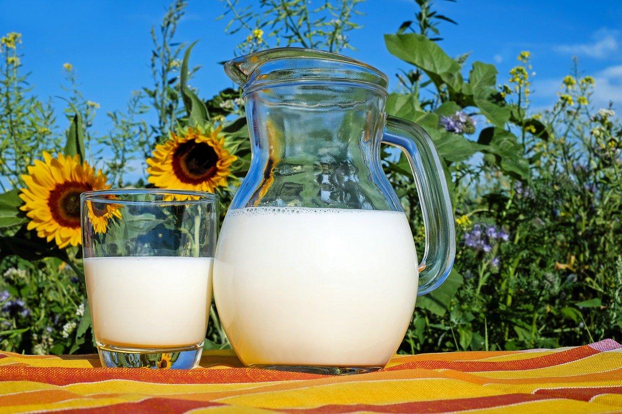 St. Paulin Essen und Trinken Milchprodukte